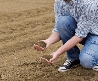 Turf - Gold Coast - Gilston - Soil